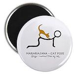 Marjariasana - Cat Pose - things I learned 2.25