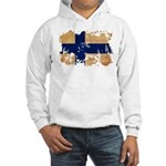 Finland Flag Hooded Sweatshirt