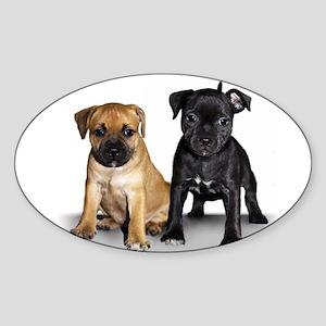 Staffie puppies Sticker (Oval)