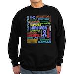 Survivor - Stomach Cancer Sweatshirt (dark)