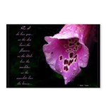 Love & Foxglove Postcards (Package of 8)