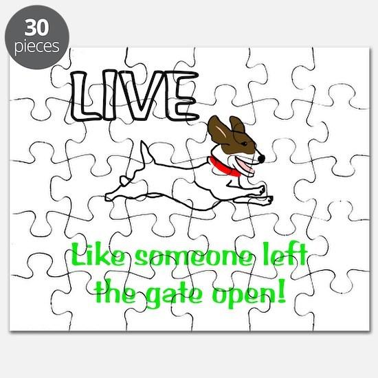 Live the gates open Puzzle