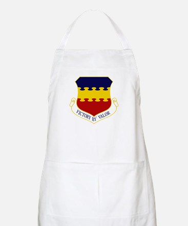 20th Fighter Wing Apron