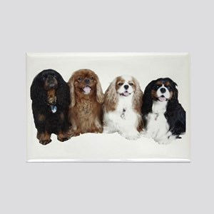 4Cavaliers Rectangle Magnet