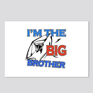 Cool Hangliding Big Brother Design Postcards (Pack