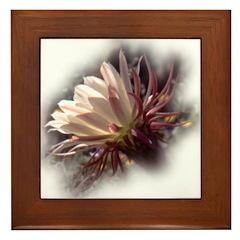 White Cactus Flower Framed Tile