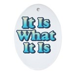 It is What It Is 2 Ornament (Oval)