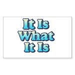 It is What It Is 2 Sticker (Rectangle 10 pk)