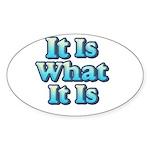 It is What It Is 2 Sticker (Oval 10 pk)