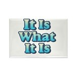It is What It Is 2 Rectangle Magnet (100 pack)
