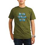 It is What It Is 2 Organic Men's T-Shirt (dark)