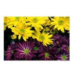 Mums Postcards (Package of 8)