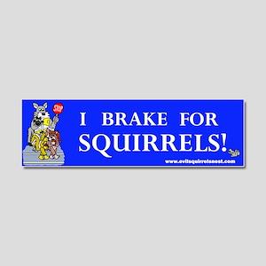 I Brake For Squirrels Car Magnet 10 x 3