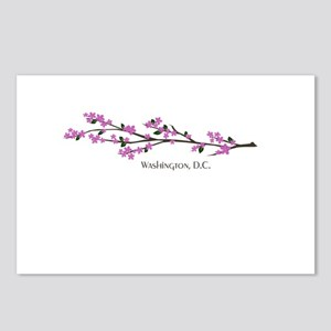 Washington, DC Cherry Blossom Postcards (8 pack)