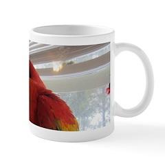 Korbel (BG) Maui (Scarlet) Mug