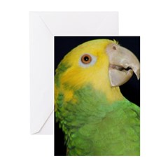 Wasabi, Hey! Greeting Cards (Pk of 20)