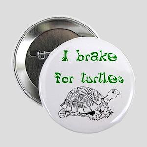 "Turtles - 2.25"" Button"