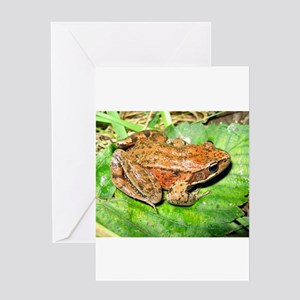 The Tale of The Toad Greeting Card