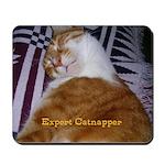 Sammy's Mousepad