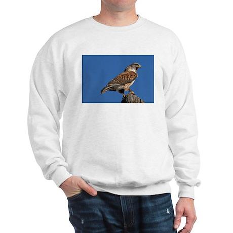 Watchful Hawk Sweatshirt