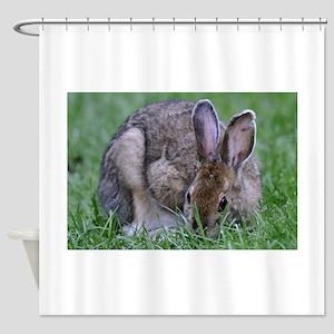 Lovable Bunny Shower Curtain