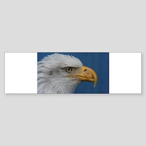 Majestic Bald Eagle Sticker (Bumper)