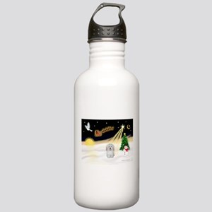 Night Flight/Coton #1 Stainless Water Bottle 1.0L