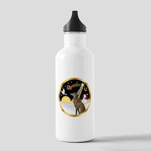 Night Flight/Greyhound (brin) Stainless Water Bott