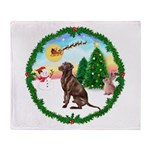 Take Off1/Lab (choc) Throw Blanket