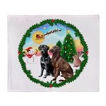 Take Off1/2 Labs(cho/blk) Throw Blanket