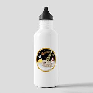 Night Flight/Pekingese Stainless Water Bottle 1.0L