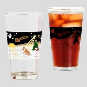 Night Flight/Pomeranian Drinking Glass