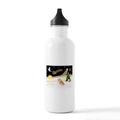 Night Flight/Pomeranian Water Bottle