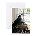 Baby Raven - Greeting Cards (Pk of 10)