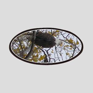Bald Eagle #01 Patches