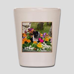 Boston Terrier Shot Glass