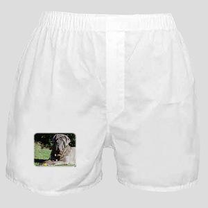 Neapolitan Mastiff AA018D-069 Boxer Shorts