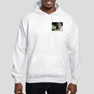 Neapolitan Mastiff AA018D-069 Hooded Sweatshirt