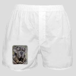 Neapolitan Mastiff AA021D-048 Boxer Shorts