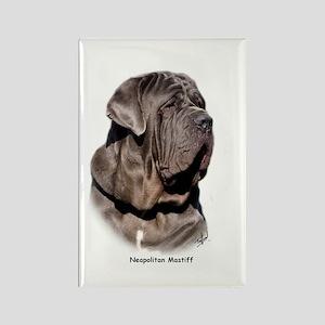 Neapolitan Mastiff 9Y393D-045 Rectangle Magnet