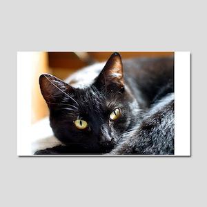Sleek Black Cat Car Magnet 20 x 12