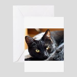 Sleek Black Cat Greeting Card