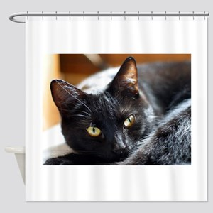 Sleek Black Cat Shower Curtain