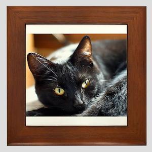 Sleek Black Cat Framed Tile