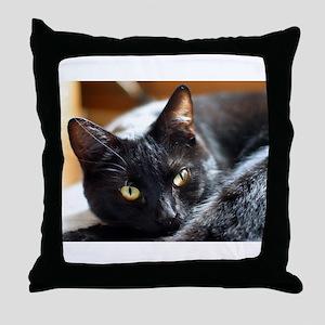 Sleek Black Cat Throw Pillow
