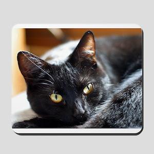 Sleek Black Cat Mousepad