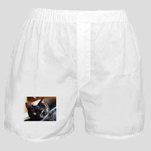 Sleek Black Cat Boxer Shorts