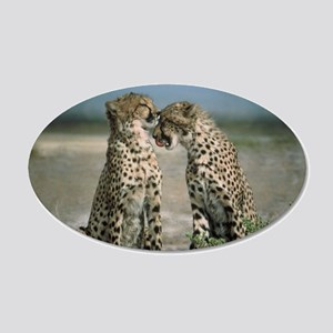 Cheetah Love 22x14 Oval Wall Peel