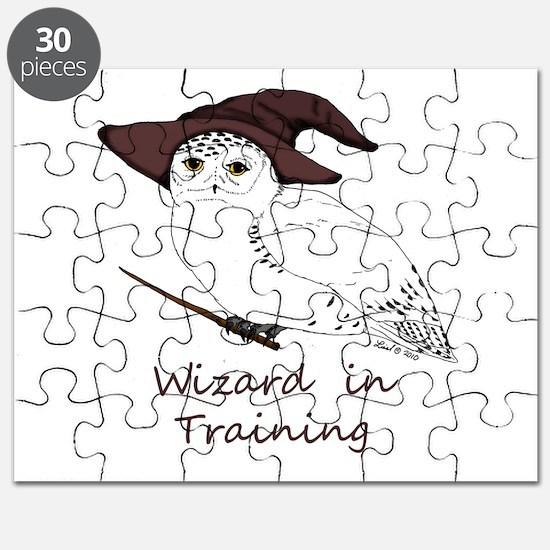 Wizard owl Puzzle