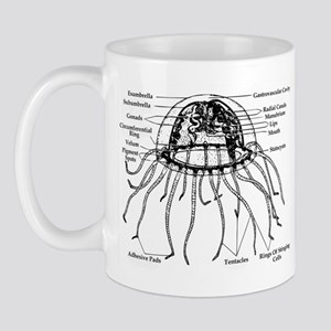 Diagram Of Jellyfish Mug